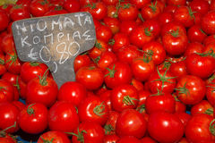 Fresh harvrst of delicious tomatoes Stock Images