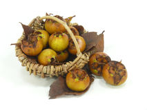 Fresh havest bio Medlar Stock Photo