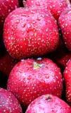 Fresh hawthorn. royalty free stock photos