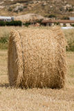 Fresh hay bales stock photography