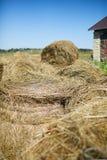 Hay stacks in farm Stock Photo