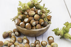 Fresh hazelnuts in bowl Royalty Free Stock Images