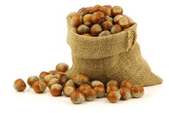 Fresh hazelnuts in a burlap bag Royalty Free Stock Image