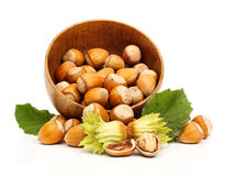 Fresh hazelnuts in wooden pot Royalty Free Stock Image