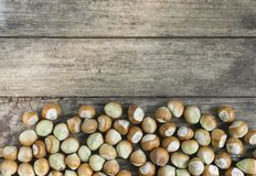 Fresh hazelnuts on wooden table with copy space stock photo