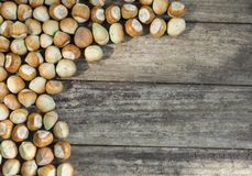 Fresh hazelnuts on wooden table with copy space royalty free stock image