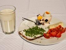 Fresh healhty breakfast Royalty Free Stock Photo