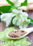 Fresh healing earth. On spoon Royalty Free Stock Photo