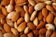 Fresh healthy apricot seeds , food background Stock Photos