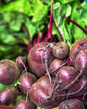 Fresh healthy beetroots. On display at market stall Stock Image