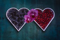 Fresh healthy berries in a white heart shape representing on dark vintage background - Healthy food, Vegetarian Valentine`s day. Two heart shapes with red and stock images