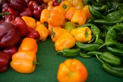 Fresh healthy bio red, green and yellow paprika on farmer agricultural market. Healthy vegetarian food royalty free stock photos