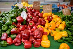 Fresh healthy bio red, green and yellow paprika on farmer agricultural market. Healthy vegetarian food stock image
