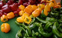 Fresh healthy bio red, yellow paprika and green pepper on farmer agricultural market. Healthy vegetarian food stock photo