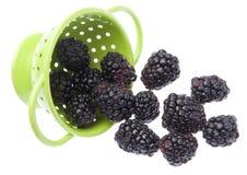 Fresh Healthy Blackberries Royalty Free Stock Images