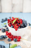 Fresh and healthy blueberries and red currant Royalty Free Stock Photography