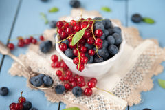 Fresh and healthy blueberries and red currant Royalty Free Stock Photo