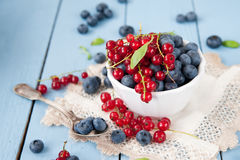 Fresh and healthy blueberries and red currant Royalty Free Stock Images
