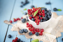 Fresh and healthy blueberries and red currant Stock Photos