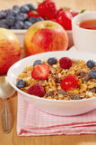 Fresh healthy breakfast. Close up of muesli with fresh berries Stock Photography