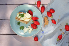 Fresh healthy breakfast, a slice of soda bread with butter and cottage cheese and red radish. Fresh healthy breakfast, a slice of soda bread with butter, cottage Stock Image