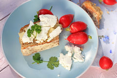 Fresh healthy breakfast, a slice of soda bread with butter and cottage cheese and red radish. On blue plate Stock Photography