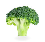Fresh healthy broccoli Royalty Free Stock Image
