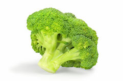 Fresh healthy broccoli on white background. Fresh healthy broccoli on a white background with clipping path Stock Images