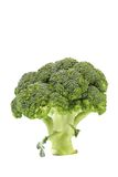 Fresh healthy brocoli Royalty Free Stock Photos