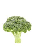 Fresh healthy brocoli. Stock Photos