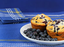 Fresh and healthy bueberries and blueberry muffins Royalty Free Stock Photography