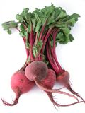 Fresh healthy bunch of beetroot Royalty Free Stock Photos