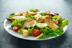 Fresh healthy Caesar salad with chicken, egg quail, tomatoes, Cheese and Croutons in a white plate Stock Photos