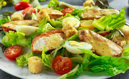 Fresh healthy Caesar salad with chicken, egg quail, tomatoes, Cheese and Croutons in a white plate Royalty Free Stock Images