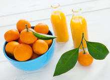 Fresh healthy citrus juice Stock Images