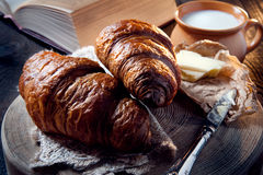 Fresh healthy croissant for breakfast Royalty Free Stock Photography