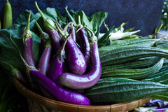 Fresh healthy eggplants on dark background.  Royalty Free Stock Image