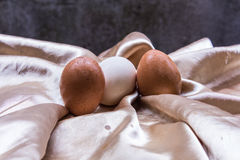 Fresh and healthy eggs, still life Easter Stock Photos