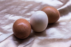 Fresh and healthy eggs, still life Easter Stock Image