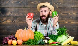 Only fresh and healthy food. bearded mature farmer. harvest festival. man chef with rich autumn crop. organic and. Natural food. happy halloween. seasonal royalty free stock photos