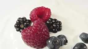 Fresh healthy food. Blueberries falling into yogurt with raspberries and blackberries. Fresh fruits splashing in whipped cream. Organic berry, clean eating stock video footage