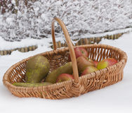 Fresh healthy fruit in winter. Stock Photography