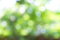 Fresh healthy green bio background. stock photos