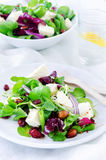 Fresh healthy green salad for lunch dinner Stock Photography