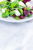 Fresh healthy green salad for lunch dinner Stock Images