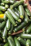 Fresh healthy green zucchini courgettes. On the marketplace Stock Photography