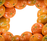 Fresh healthy mandarin citrus fruit Royalty Free Stock Photo