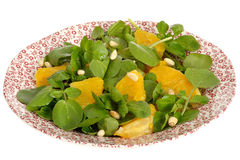 Fresh Healthy Orange and Watercress Salad Royalty Free Stock Photos