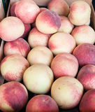 Fresh healthy peaches on  farmer market Royalty Free Stock Image