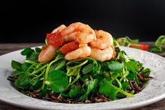 Fresh Healthy Prawns black rice salad on white plate Stock Photos